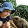 Understanding Your Child's Neuroplastic Brain